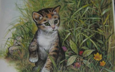 Сказка Котёнок