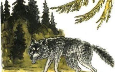 Сказка Волк и волчица