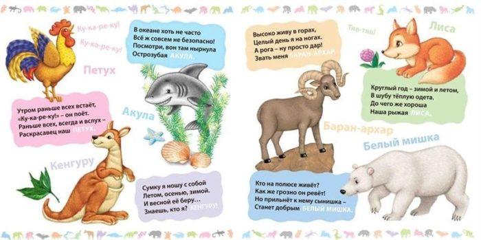 Загадки про диких и домашних животных с ответами