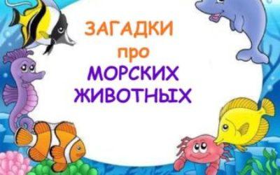 Загадки про рыб с ответами