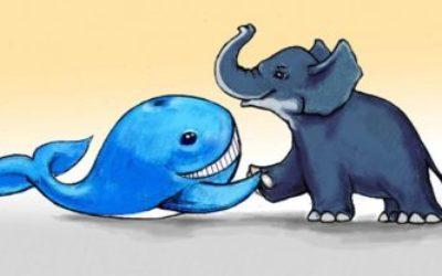 Сказка Заяц, который победил кита и слона